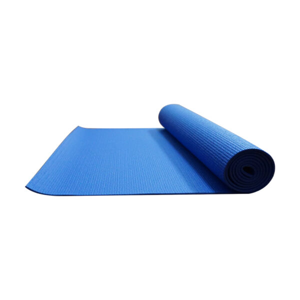 Colorful Branded Bodhi Biodegradable Antimicrobial Yoga Mat